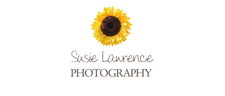 Wedding and Portrait Photography – Destination ~ UK ~ France ~ Italy ~ Spain ~ Susie Lawrence Photography logo
